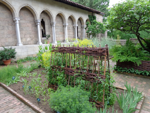 The Bonnefont Cloister garden at the The Cloisters in New York taken by Claire Delacroix