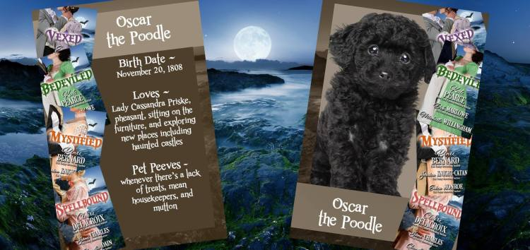 Oscar the poodle, who has cameo roles in the Regency romance novellas of the Haunting of Castle Keyvnor collection