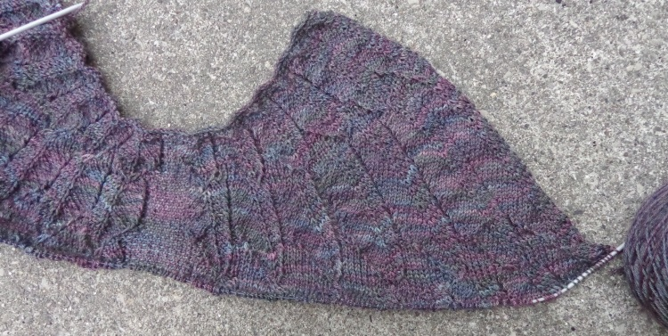 Wingspan shawl knit by Deborah Cooke
